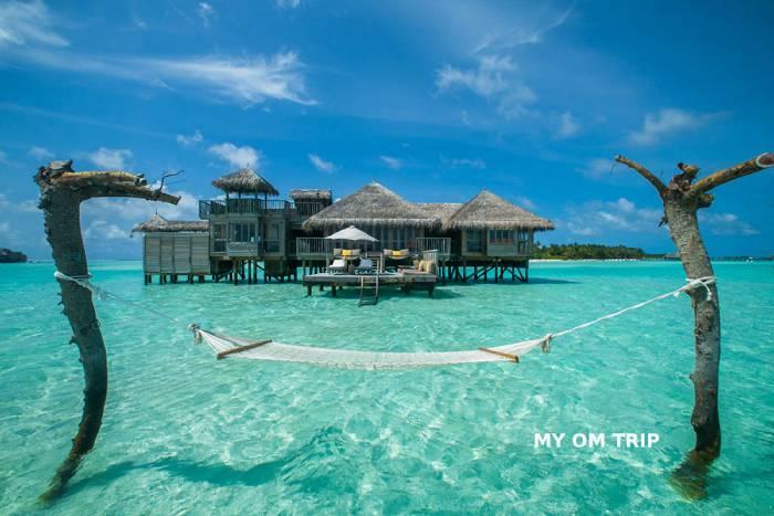 Honey Maldives