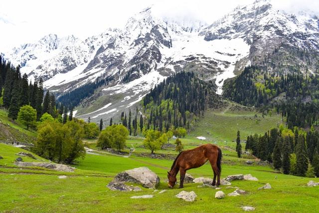Cholo Kashmir