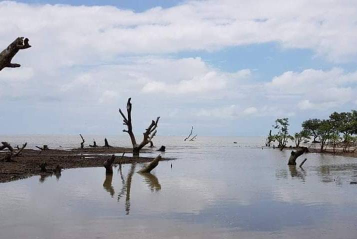 Bichitrapur